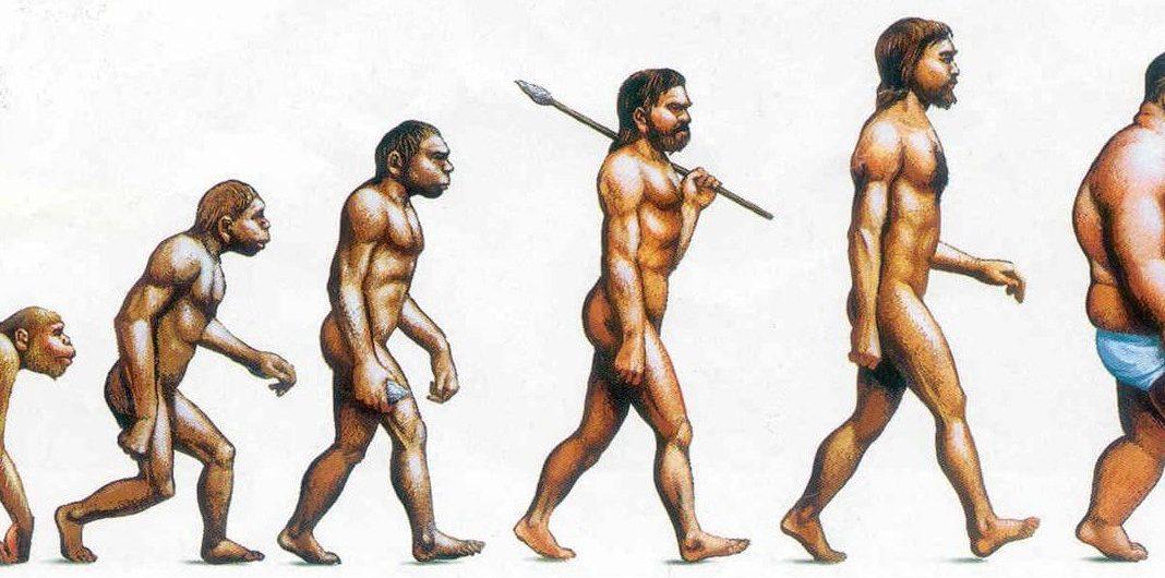 Evolution der Adipositas.